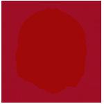 Logo HistoriCal